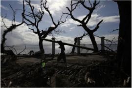 Estremecedores efectos del súper tifón Yolanda en Leyte, en Filipinas. Crédito: Bernard Testa/INTERAKSYON.