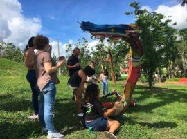 Estudiantes de UPR Cayey participan del taller Del arbol caido_