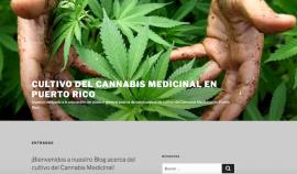 blog cannabis