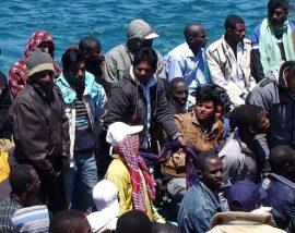 migrantes ips