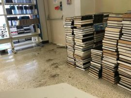 biblioteca rcm 2
