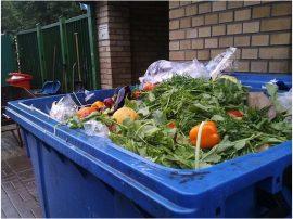 Polonia desperdicia por lo menos 8.9 millones de toneladas de alimentos al año. Crédito: Claudia Ciobanu / IPS