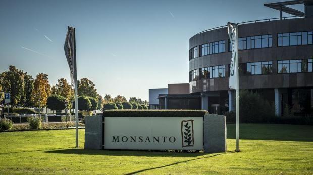 Monsanto pinterest