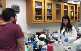 laboratorio neurociencia rcm youtube