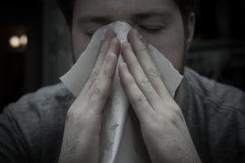 estornudar William Brawlley on visualhunt