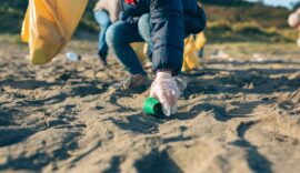 Invitan-a-limpieza-de-la-playa-de-la-Guancha-en-Ponce-para-proteger-a-las-tortugas-marinas-Foto
